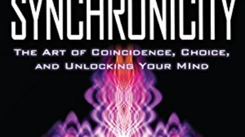 Synchronicity: The Art of Coincidence, Choice, and Unlocking Your Mind by Kirby Surprise