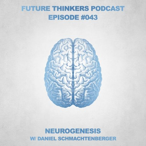 FTP043: Daniel Schmachtenberger – Neurohacking & Neurogenesis