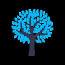 FTP-Icons_0001_noun_Tree_2933832